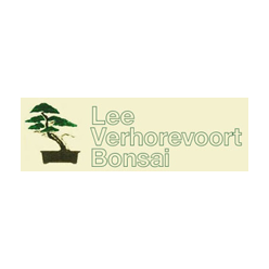 Lee Verhorevoort Bonsai